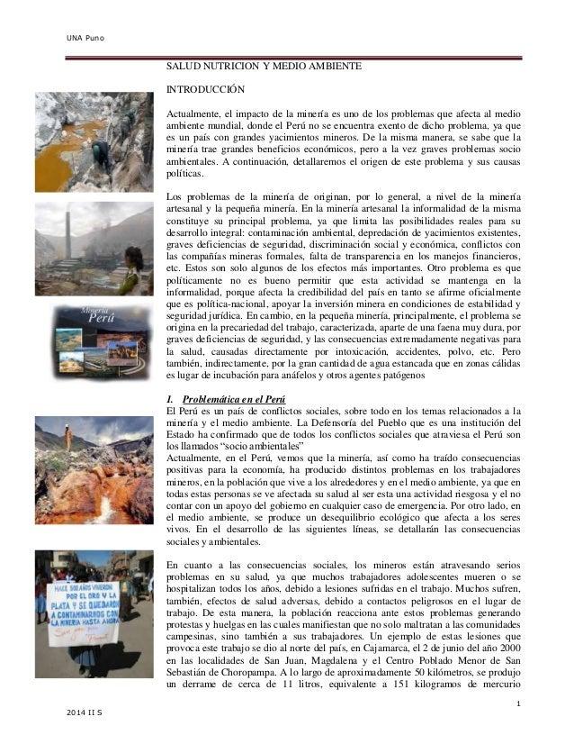 UNA Puno  1  2014 II S  SALUD NUTRICION Y MEDIO AMBIENTE  INTRODUCCIÓN  Actualmente, el impacto de la minería es uno de lo...