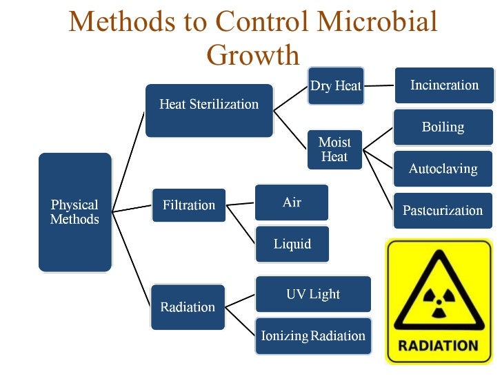 microbial growth Any given cell has a finite life span, and the species is maintained only as a result of continued growth of the population the indicators of microbial growth were increase in both population size and population mass: microbial populations tend to increase in number and in cell mass simultaneously increase in cell.