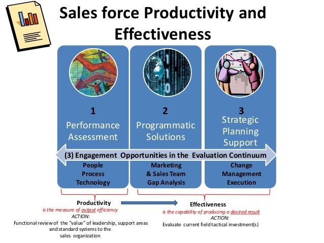 Sales force Productivity and Effectiveness Performance Assessment Programmatic Solutions Strategic Planning Support (3) En...