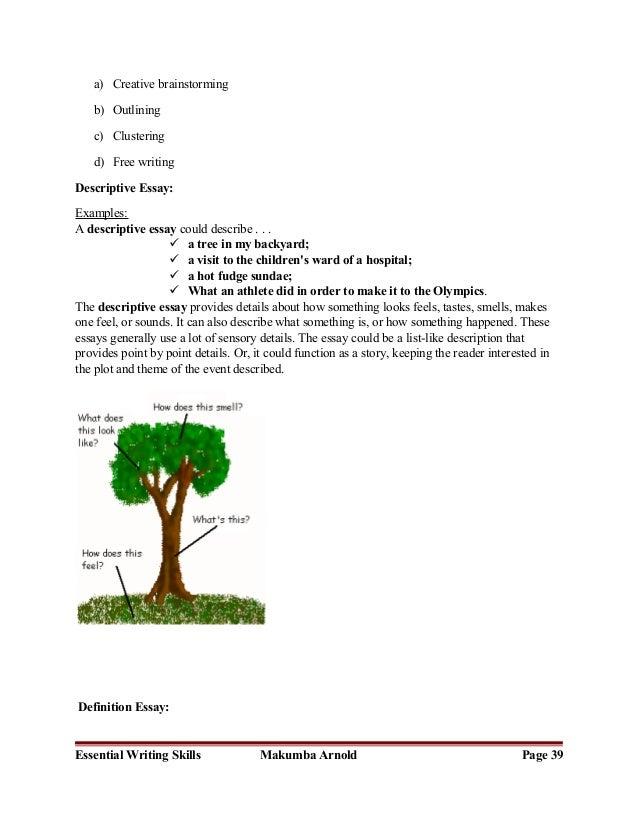 Description of essay