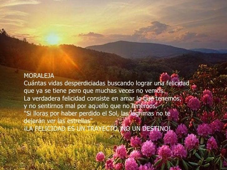 MORALEJA Cuántas vidas desperdiciadas buscando lograr una felicidad  que ya se tiene pero que muchas veces no vemos. La ve...