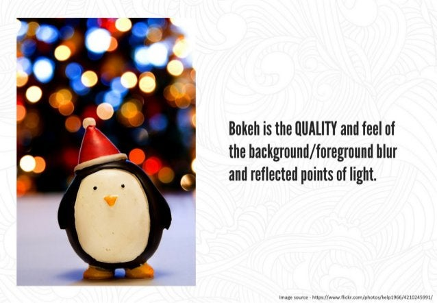 """Bokeh is rendered by the lens,  not the camera.          Different lenses render bokeh differently  _  """"  due to unique op..."""
