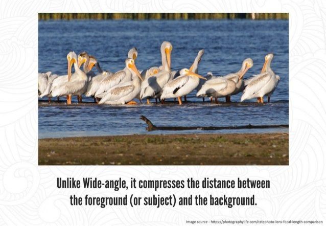 As you have probably guessed it,  Medium or Standard neutralizes the distance between the foreground (or subject) and back...