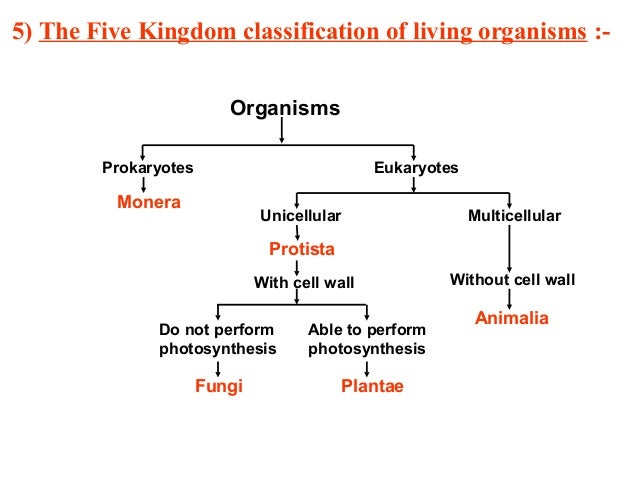 diversity in living organism In biology, an organism (from greek: ὀργανισμός, organismos) is any individual entity that exhibits the properties of lifeit is a synonym for life form.