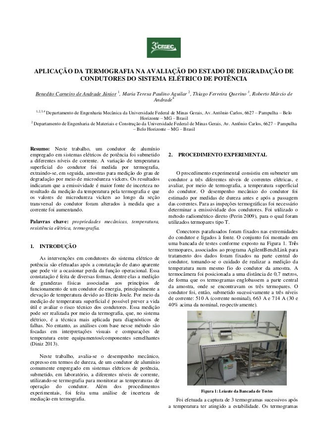 APLICAÇÃO DA TERMOGRAFIA NA AVALIAÇÃO DO ESTADO DE DEGRADAÇÃO DE CONDUTORES DO SISTEMA ELÉTRICO DE POTÊNCIA Benedito Carne...