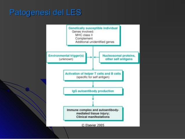 terapia steroidea sistemica
