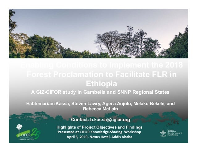 Highlights of Project Objectives and Findings Presented at CIFOR Knowledge‐Sharing  Workshop April 5, 2019, Nexus Hotel, A...