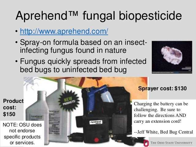 Bed Bug Biology/Behavior and Research Update