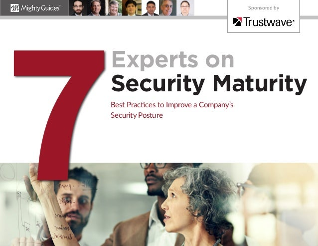 Experts on Security Maturity Best Practices to Improve a Company's Security Posture 7 Sponsored by