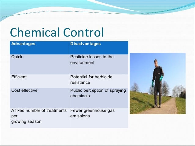 disadvantages and advantages pesticides It is an alternative to using broad-spectrum pesticides csanyi, carolyn advantages & disadvantages of biological control sciencing.