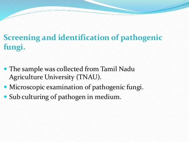 Screening and identification of pathogenic fungi.  The sample was collected from Tamil Nadu Agriculture University (TNAU)...