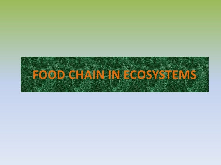 FOOD CHAIN IN ECOSYSTEMS<br />