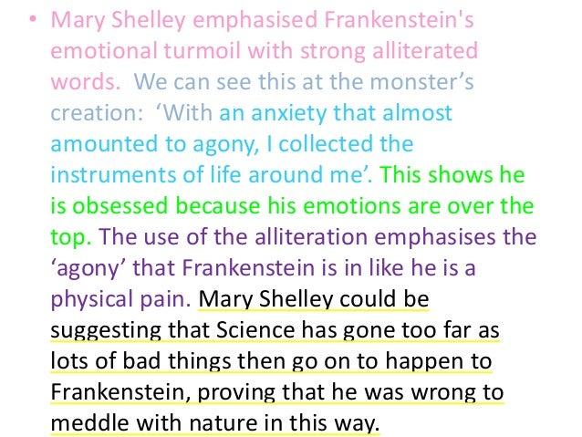 Frankenstein Essay Examples