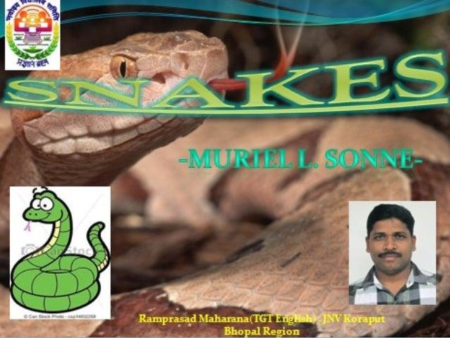 CLICK HERE TO EDIT  Ramprasad Maharana , JNV Koraput Bhopal Region