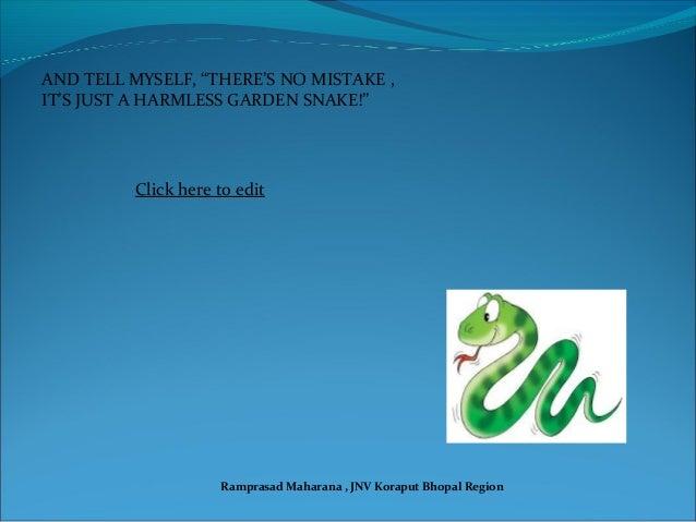 7_Garden Snake