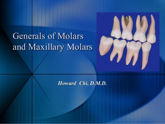 Generals of MolarsGenerals of Molars and Maxillary Molarsand Maxillary Molars Howard Chi, D.M.D.Howard Chi, D.M.D.