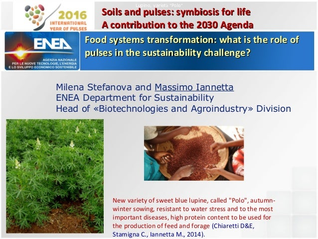 Milena Stefanova and Massimo Iannetta ENEA Department for Sustainability Head of «Biotechnologies and Agroindustry» Divisi...