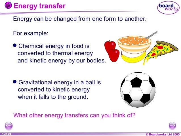 energy transfers which take place in living organisms essay Aqa – biology unit 5 the essay: 2 if the essay has been classed as good temperature can have a number of effects on living organisms.
