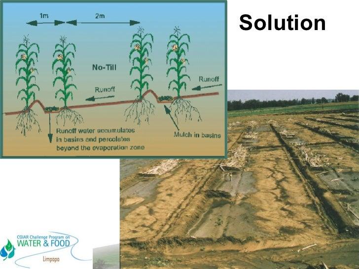 In Field Rainwater Harvesting Promising Solutions For Africa