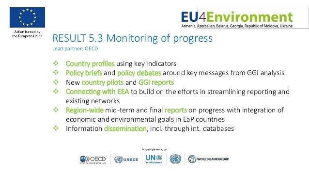 RESULT 5.3 Monitoring of progress Lead partner: OECD  Country profiles using key indicators  Policy briefs and policy de...