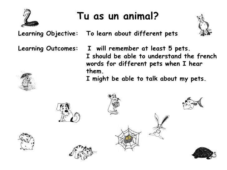 Tu as un animal?<br />Learning Objective:	To learn about different pets<br />Learning Outcomes:	I  will remember at least ...