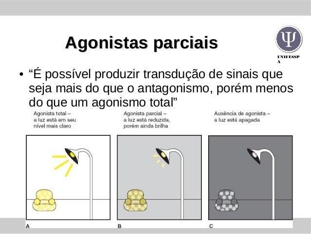 """UNIFESSP A Agonistas parciaisAgonistas parciais ● """"É possível produzir transdução de sinais que seja mais do que o antagon..."""