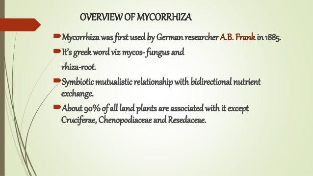 OVERVIEWOF MYCORRHIZA Mycorrhiza was first used by German researcher A.B. Frank in 1885. It's greek word viz mycos- fung...