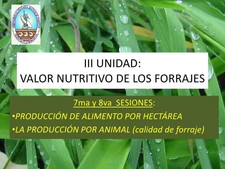 III UNIDAD: VALOR NUTRITIVO DE LOS FORRAJES             7ma y 8va SESIONES:•PRODUCCIÓN DE ALIMENTO POR HECTÁREA•LA PRODUCC...