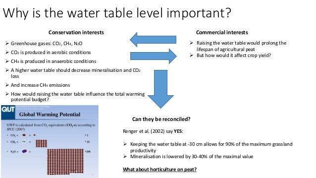 Effects of a raised water table on greenhouse gas emissions