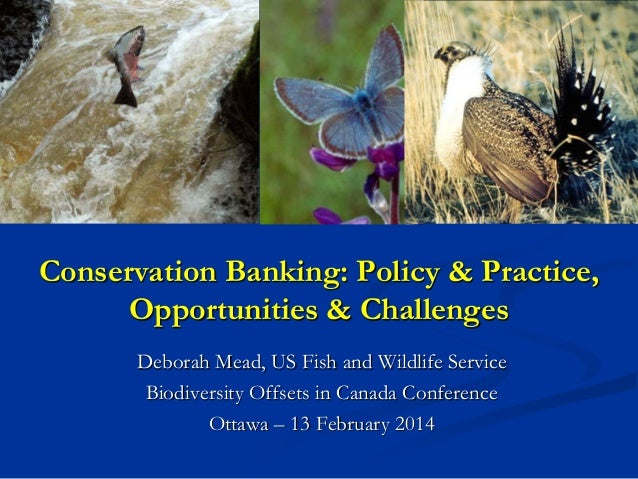 Conservation Banking: Policy & Practice, Opportunities & Challenges Deborah Mead, US Fish and Wildlife Service Biodiversit...