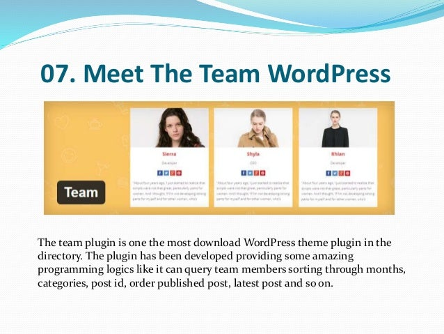 meet the staff wordpress plug ins
