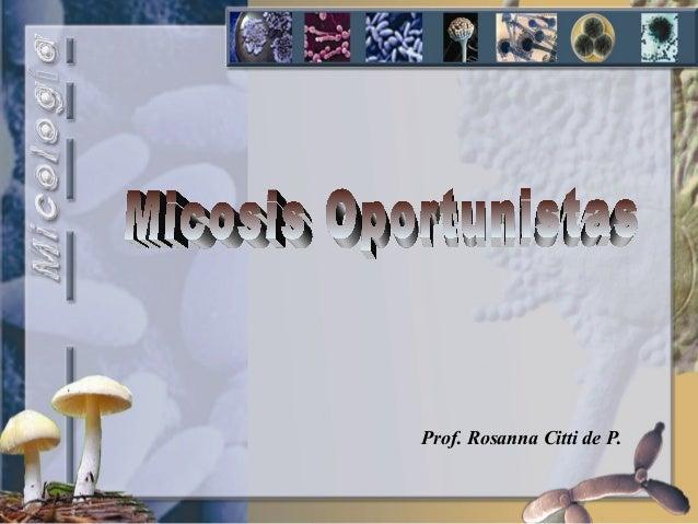 Prof. Rosanna Citti de P.
