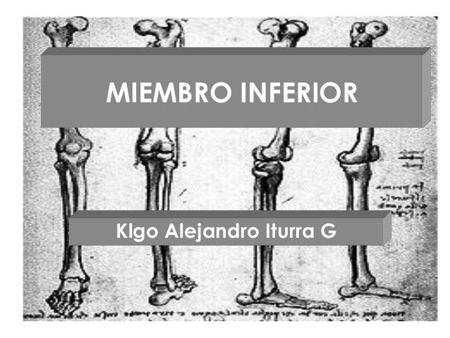 MIEMBRO INFERIOR Klgo Alejandro Iturra G