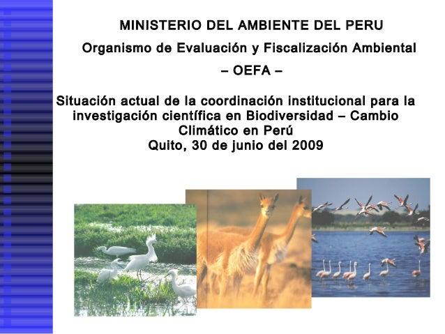 MINISTERIO DEL AMBIENTE DEL PERU Organismo de Evaluación y Fiscalización Ambiental – OEFA – Situación actual de la coordin...