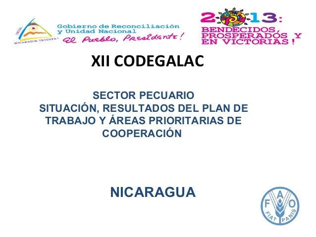 XII CODEGALAC SECTOR PECUARIO SITUACIÓN, RESULTADOS DEL PLAN DE TRABAJO Y ÁREAS PRIORITARIAS DE COOPERACIÓN  NICARAGUA