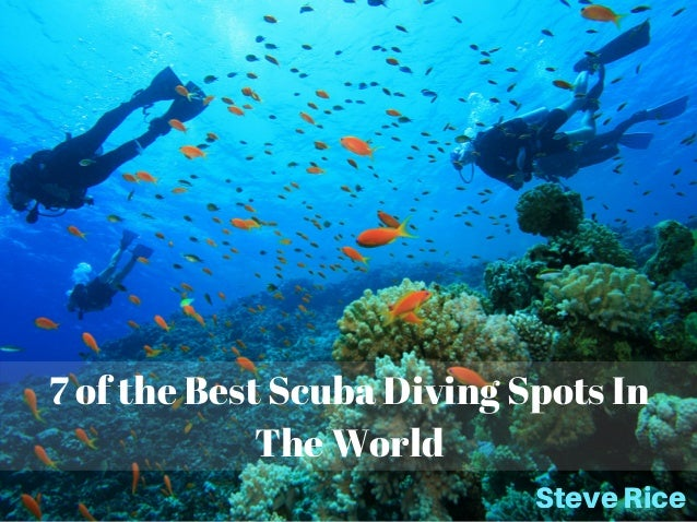 7 of the Best Scuba Diving Spots In The World SteveRice