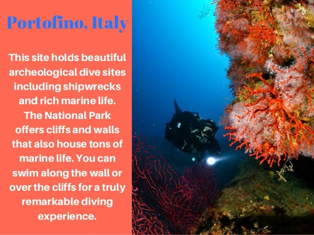 Steve Rice Los Gatos: 7 of the Best Scuba Diving Spots in the World Slide 2