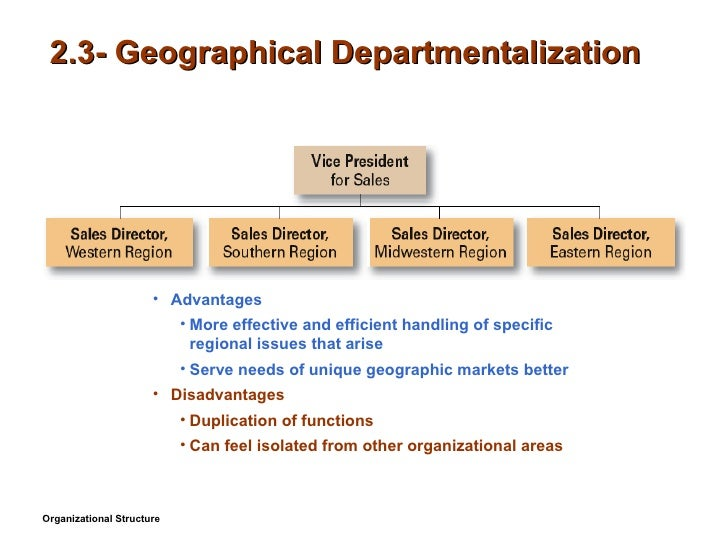 Product and geographic departmentalization