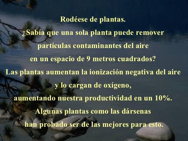 Rodéese de plantas.  ¿Sabía que una sola planta puede remover  partículas contaminantes del aire  en un espacio de 9 metro...