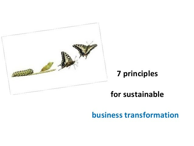 7 principles for sustainable business transformation