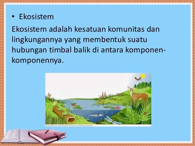 Keanekaragaman Hayati Tingkat Ekosistem Ppt