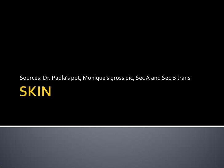 SKIN<br />Sources: Dr. Padla'sppt, Monique's gross pic, Sec A and Sec B trans <br />
