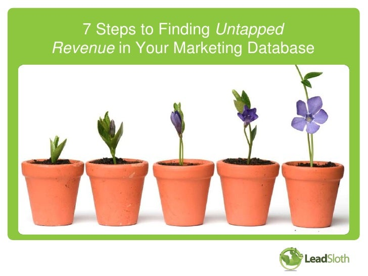 7 Steps to Finding UntappedRevenue in Your Marketing Database<br />