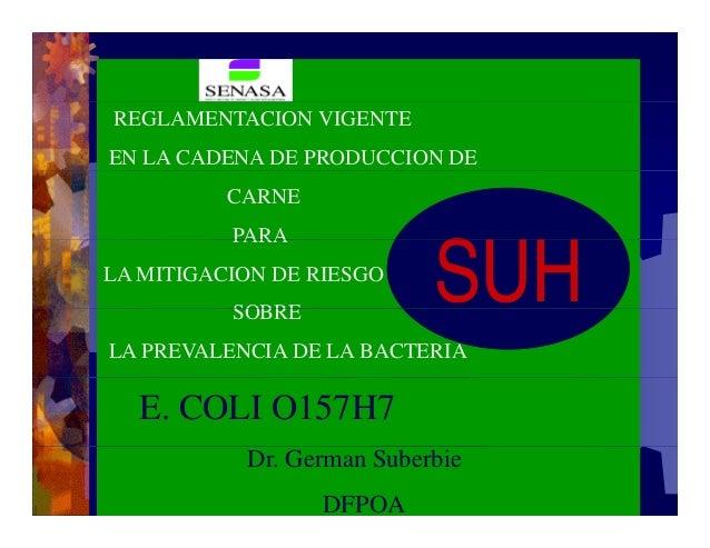REGLAMENTACION VIGENTE EN LA CADENA DE PRODUCCION DE CARNE PARA LA MITIGACION DE RIESGO SOBRE  SUH S  LA PREVALENCIA DE LA...