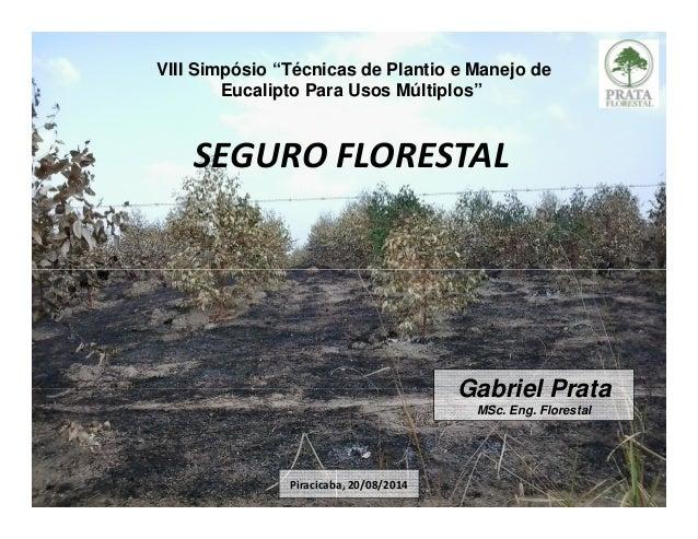 "SEGURO FLORESTAL VIII Simpósio ""Técnicas de Plantio e Manejo de Eucalipto Para Usos Múltiplos"" Gabriel Prata MSc. Eng. Flo..."