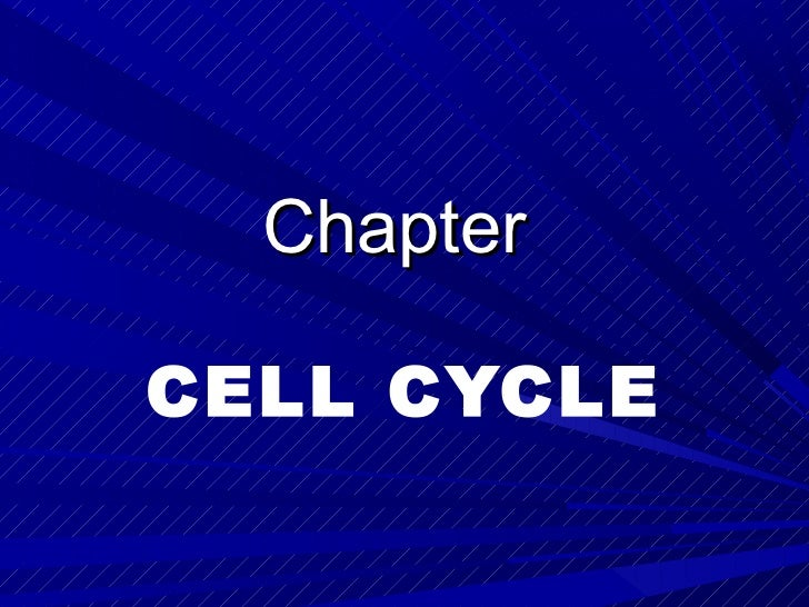 ChapterCELL CYCLE