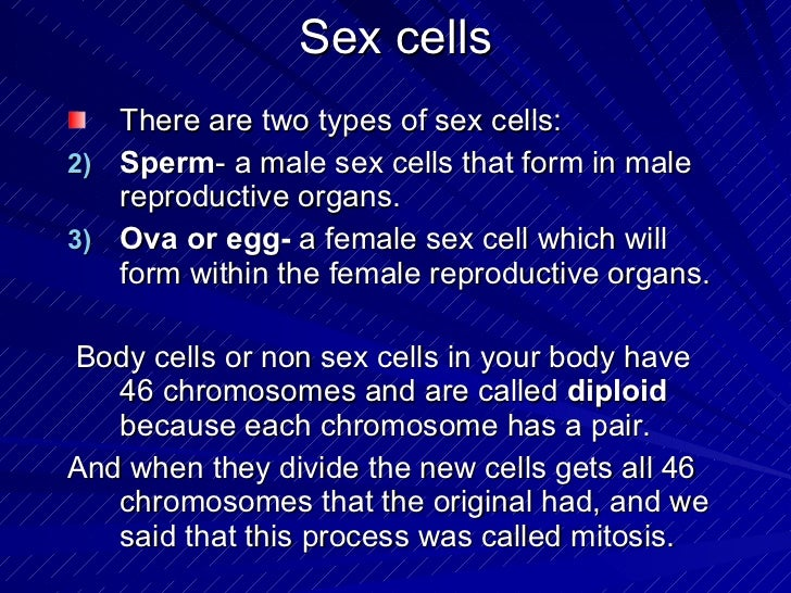 Production of sex cells