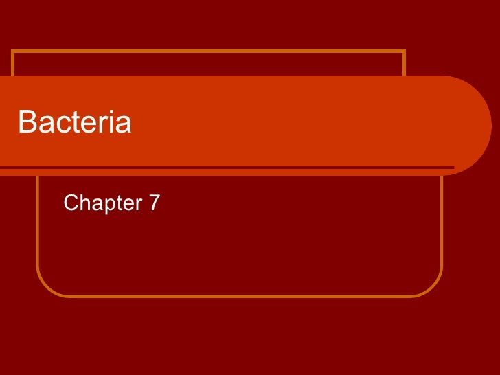 Bacteria Chapter 7