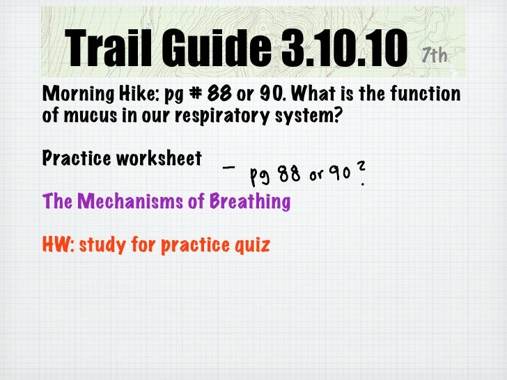 Trail Guide 3.11.10                      7th  Morning Hike: practice quiz on breathing  Lung Capacity Lab  HW: finish write...