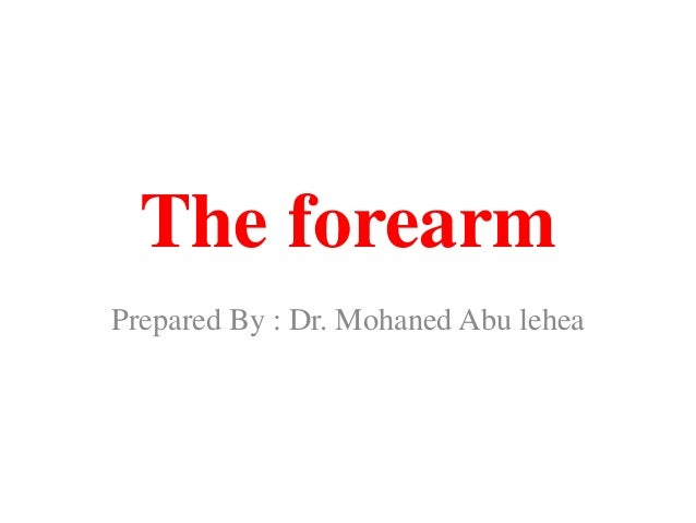 The forearm Prepared By : Dr. Mohaned Abu lehea